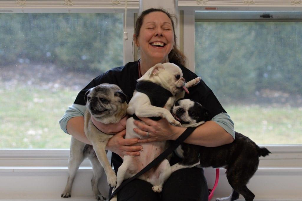 East Bradford Veterinary Hospital - West Chester PA Veterinarian